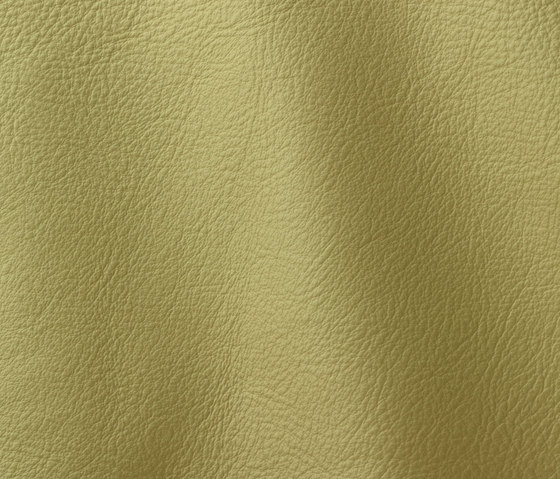 Prescott 294 lime by Gruppo Mastrotto | Natural leather