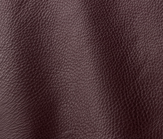 Prescott 284 aubergine by Gruppo Mastrotto | Natural leather