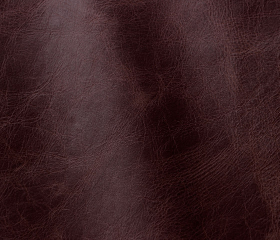 Tuscania 2005 bordeaux by Gruppo Mastrotto | Natural leather