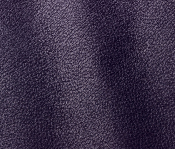 Vogue 6020 aubergine by Gruppo Mastrotto | Natural leather