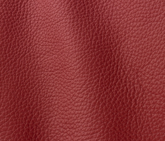 Atlantic 538 blush by Gruppo Mastrotto | Natural leather