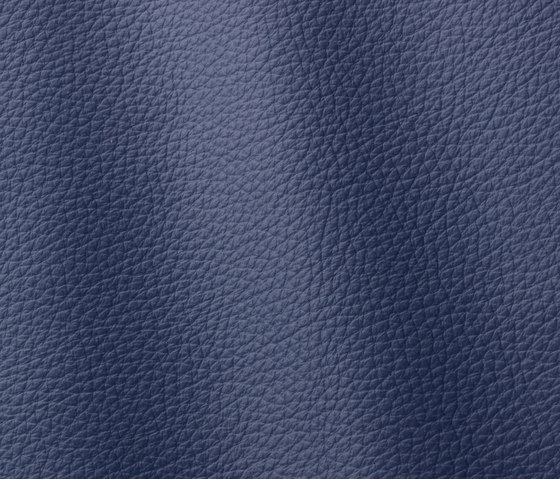 Atlantic 541 violet blue by Gruppo Mastrotto | Natural leather