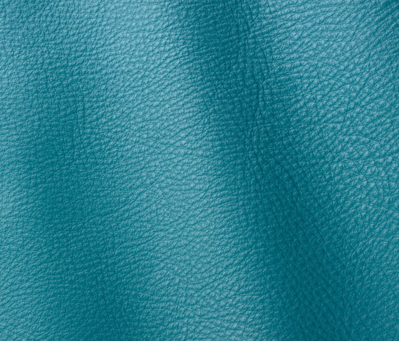 Prescott 269 turquoise by Gruppo Mastrotto | Natural leather