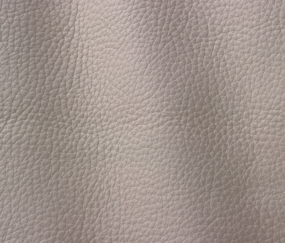 Atlantic 530 ivory by Gruppo Mastrotto | Natural leather