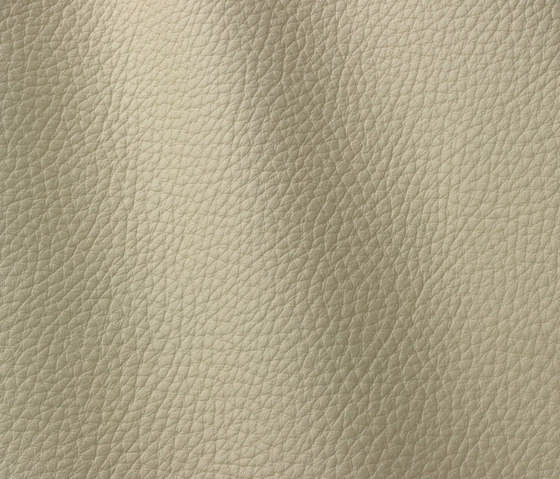 Atlantic 503 poudre by Gruppo Mastrotto | Natural leather