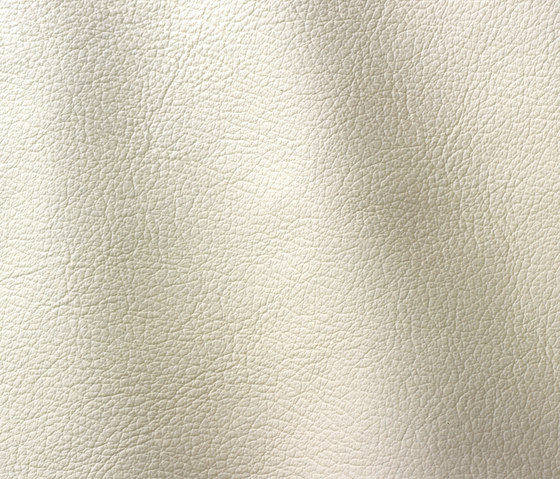 Ocean 427 milk by Gruppo Mastrotto | Natural leather