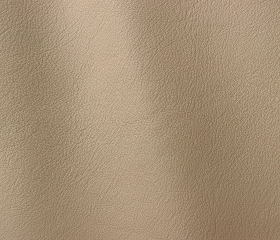 Linea 626 grey by Gruppo Mastrotto | Natural leather