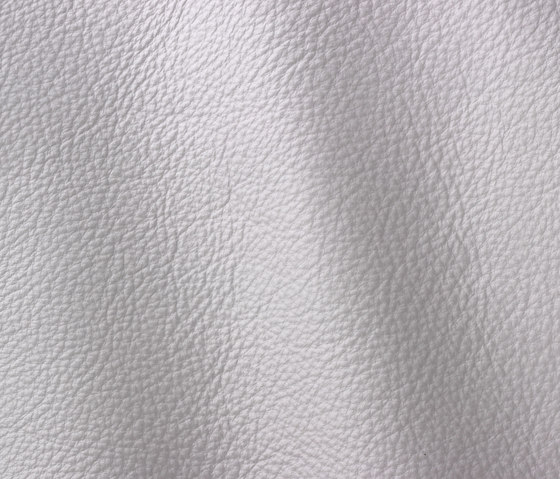 Prescott 280 wisteria by Gruppo Mastrotto | Natural leather