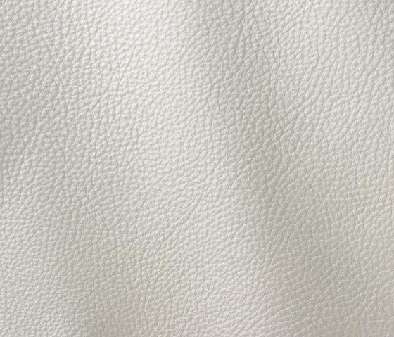 Prescott 286 zinc de Gruppo Mastrotto | Cuero natural