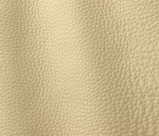 Atlantic 521 cream by Gruppo Mastrotto | Natural leather