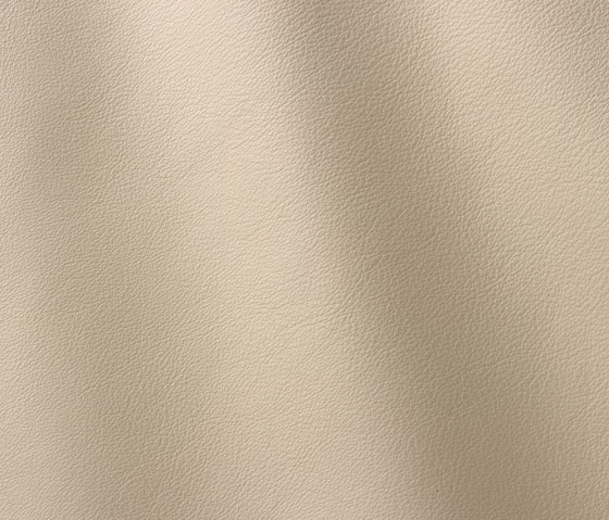 Linea 603 panna by Gruppo Mastrotto | Natural leather