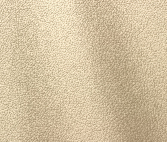 Ocean 404 ghiaccio by Gruppo Mastrotto | Natural leather