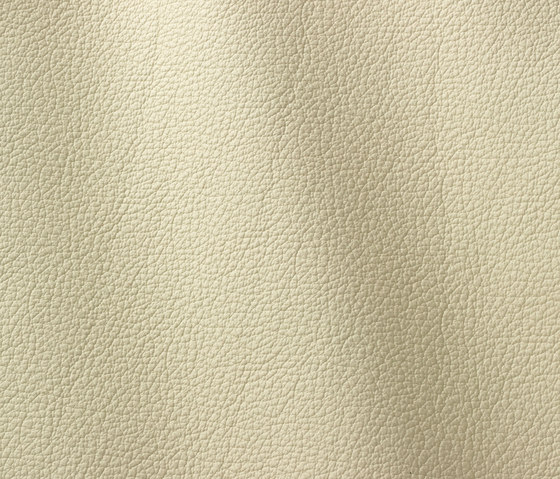 Ocean 403 panna by Gruppo Mastrotto | Natural leather