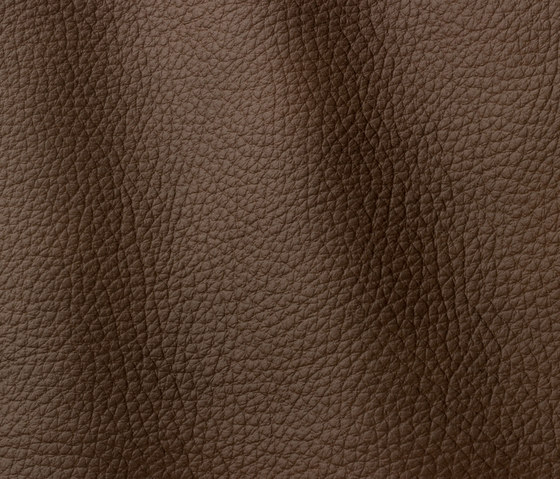 Atlantic 528 nougat by Gruppo Mastrotto | Natural leather