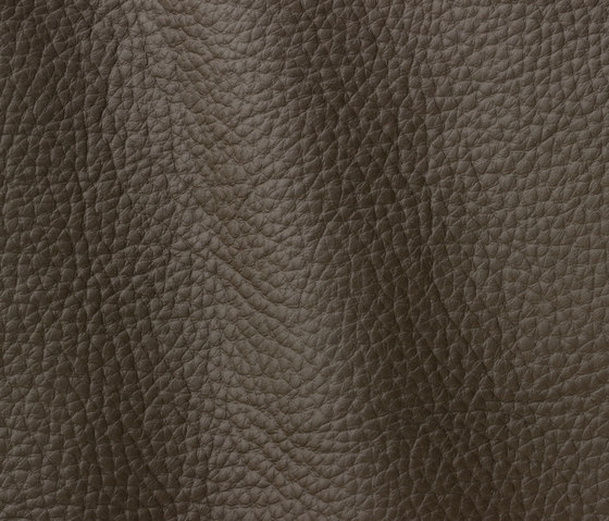 Atlantic 525 taupe by Gruppo Mastrotto | Natural leather