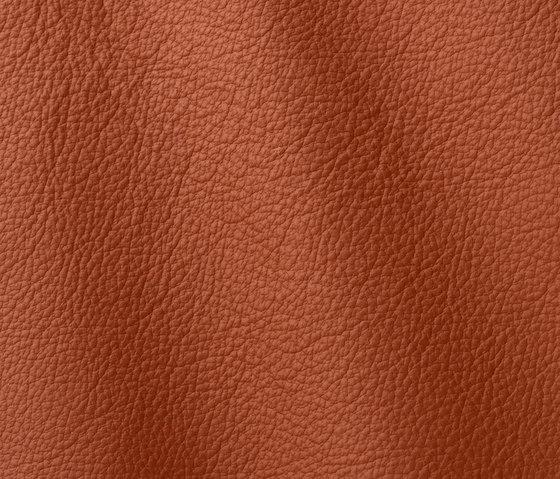 Ocean 415 bruciato by Gruppo Mastrotto | Natural leather