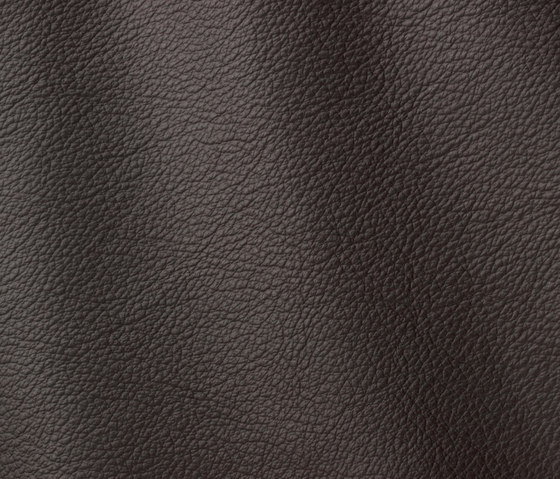 Ocean 421 topo by Gruppo Mastrotto | Natural leather