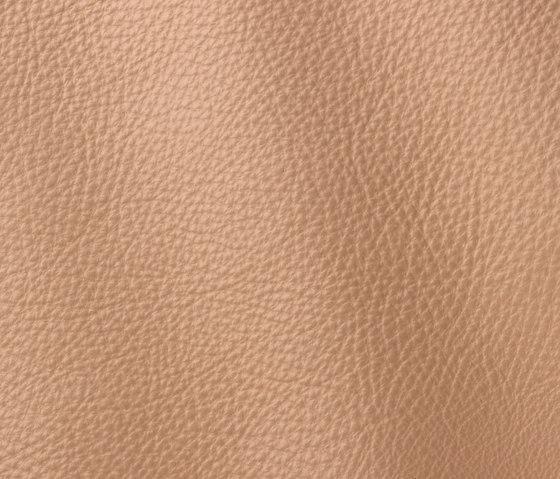 Prescott 225 coriander by Gruppo Mastrotto | Natural leather