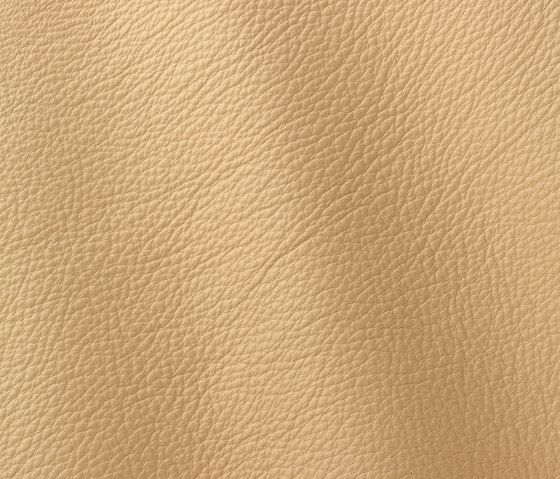 Prescott 220 desertstorm by Gruppo Mastrotto | Natural leather