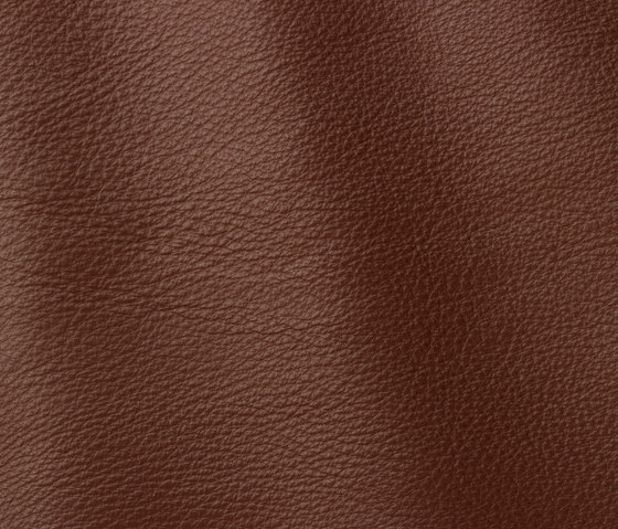Prescott 218 dune by Gruppo Mastrotto | Natural leather