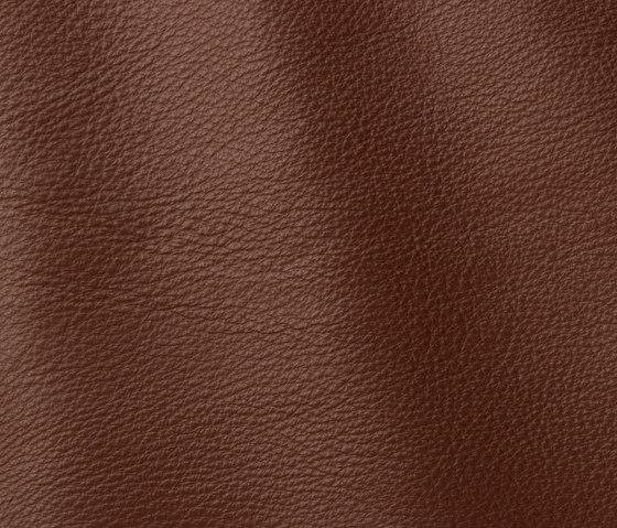 Prescott 218 dune by Gruppo Mastrotto | Natural leather