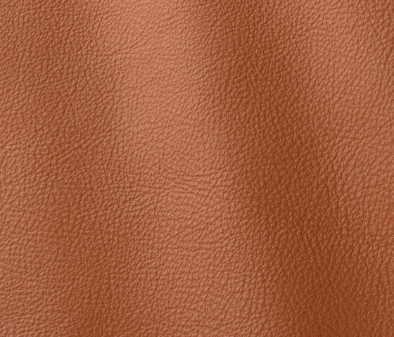 Prescott 252 volcano by Gruppo Mastrotto | Natural leather