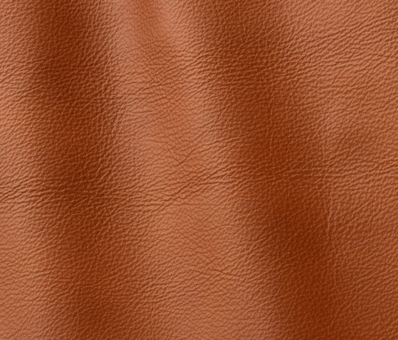 Roma 905 havanna by Gruppo Mastrotto | Natural leather