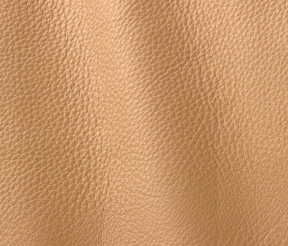 Vogue 6005 cappuccino by Gruppo Mastrotto | Natural leather