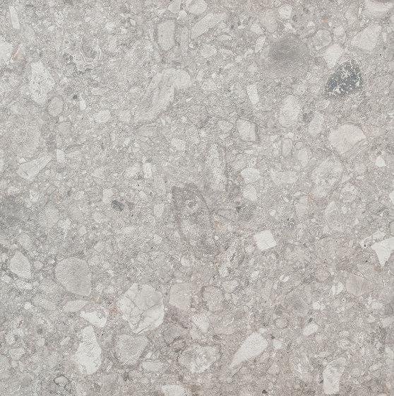 Vit RR 01 by Mirage | Tiles