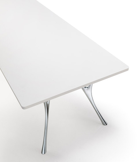 Pegaso Solid by Caimi Brevetti | Conference tables