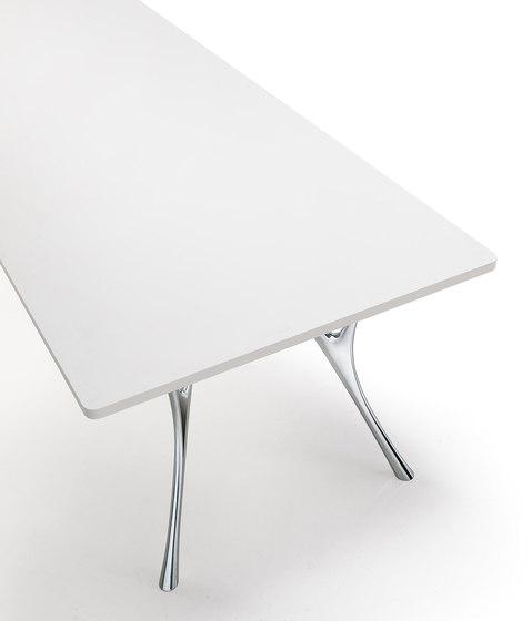 Pegaso Solid de Caimi Brevetti | Tables de conférence