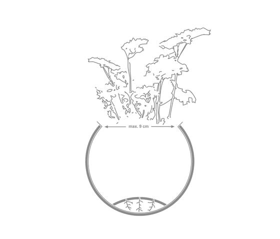 Hanging Garden by Urbanature | Flowerpots / Planters