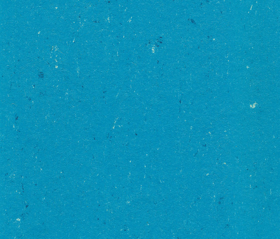 Colorette LPX 131-123 by Armstrong | Linoleum flooring
