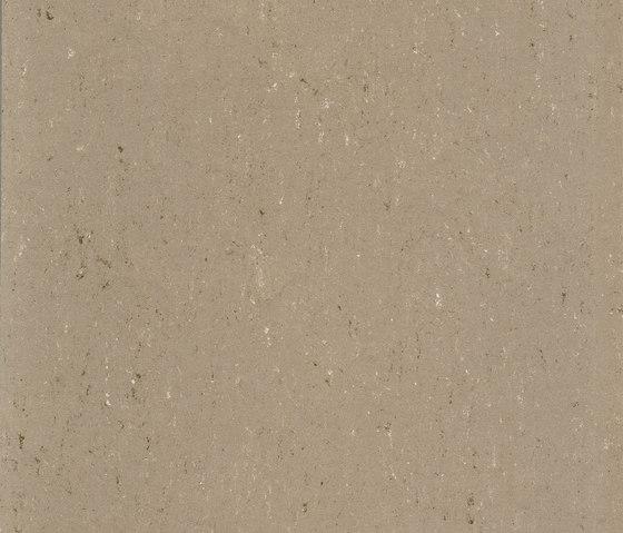 Colorette LPX 131-043 by Armstrong | Linoleum flooring