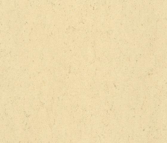 Colorette LPX 131-140 by Armstrong | Linoleum flooring