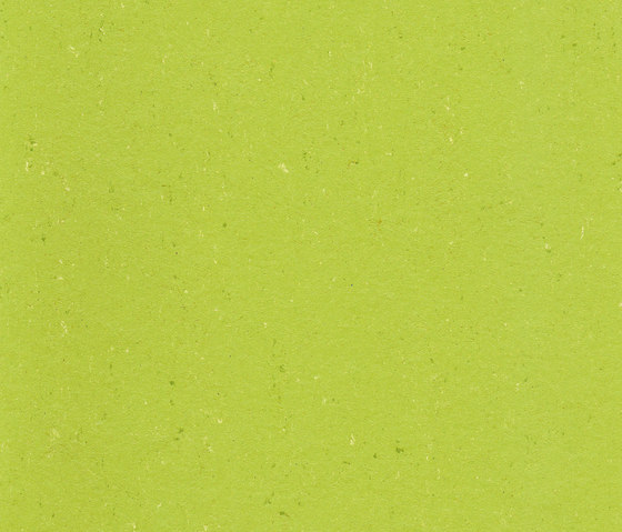 Colorette LPX 131-132 by Armstrong | Linoleum flooring