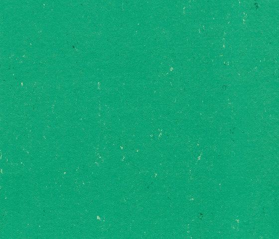 Colorette LPX 131-131 by Armstrong | Linoleum flooring