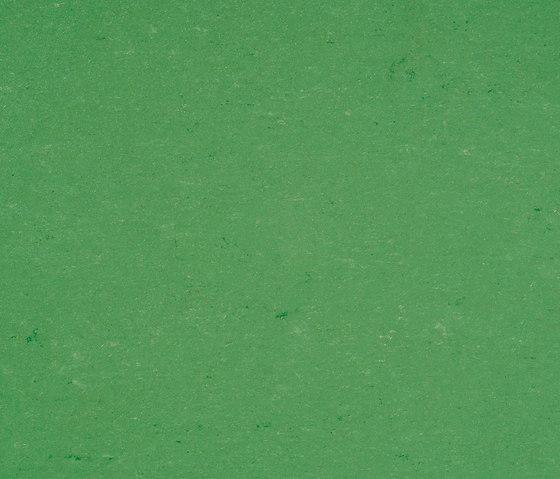 Colorette LPX 131-006 by Armstrong | Linoleum flooring