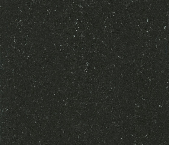Colorette LPX 131-081 by Armstrong | Linoleum flooring