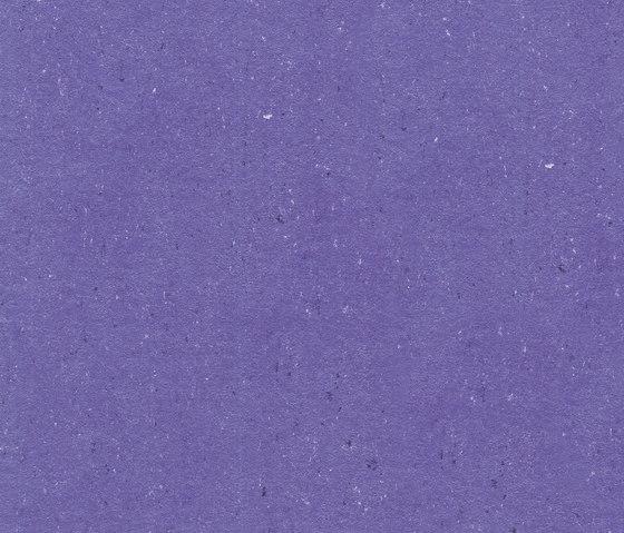 Colorette LPX 131-122 by Armstrong   Linoleum flooring
