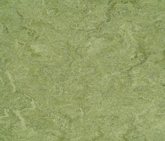 Marmorette LPX 121-100 by Armstrong | Linoleum flooring
