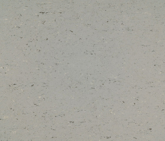 Colorette PUR 137-058 by Armstrong | Linoleum flooring