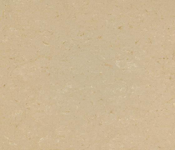 Colorette PUR 137-012 by Armstrong | Linoleum flooring