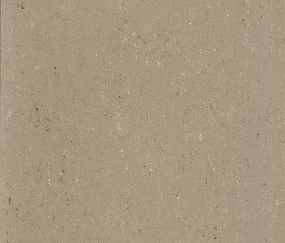 Colorette PUR 137-043 by Armstrong | Linoleum flooring