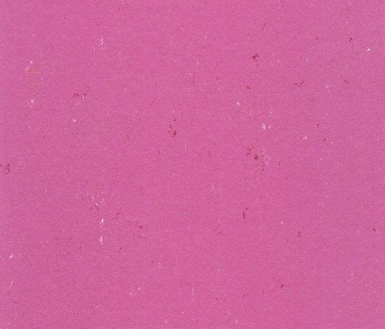Colorette PUR 137-110 by Armstrong | Linoleum flooring