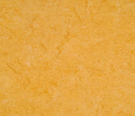 Marmorette LPX 121-072 by Armstrong | Linoleum flooring