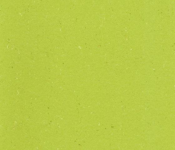 Colorette Acoustic Plus LPX 2131-132 by Armstrong | Linoleum flooring