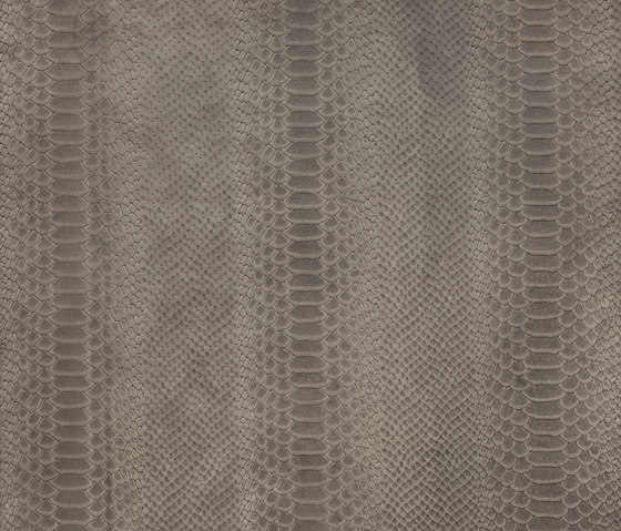 Cobra de Alphenberg Leather | Carrelage