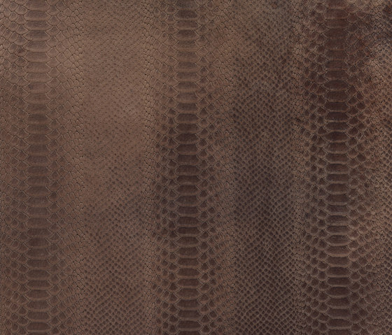 Cobra clay by Alphenberg Leather | Leather tiles