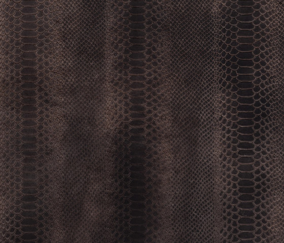 Cobra choclat by Alphenberg Leather | Leather tiles